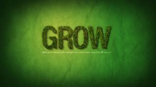 ブログ記事を成長させる3つのこと
